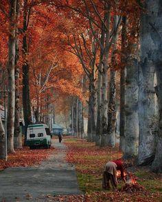 So wonderful photography of beautiful view of Kashmir Pakistan Kashmir India, Azad Kashmir, Kashmir Pakistan, Pakistan Travel, India Travel, States Of India, Autumn Scenes, Srinagar, Paradise On Earth