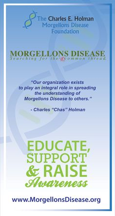 THE CEHMDF BROCHURE  MORGELLONS DISEASE --foundation doesn't seem to be active