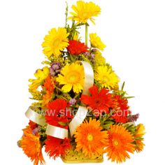 Surprise your dear and loved ones with this beautiful 24 mix colored Gerberas. A basket of multicolor Gerberas is quite stunning. Get this Amazing basket to your dear ones Through our shop2Hyderabad. Send Flowers like Roses basket to strengthen relationship by selecting our Flower Midnight Delivery.