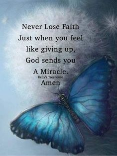 Never lose faith. Point Of View Quotes, Pieces Quotes, Butterfly Quotes, Dragonfly Quotes, Butterfly Art, Butterflies, Christian Friends, Blessed Quotes, Blessed Sign