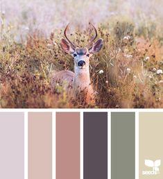Color Schemes Colour Palettes, Colour Pallette, Color Palate, Color Combos, Colour Palette Autumn, Rust Color Schemes, Design Seeds, Colour Board, Color Stories