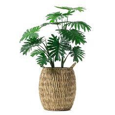 Poppy Natural Basket