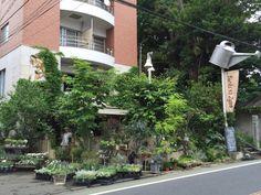 Buriki no Zyoro Tokyo garden shop ; Gardenista