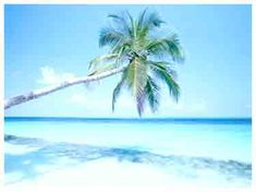Wisata Bunaken Pesona Taman Laut Manado