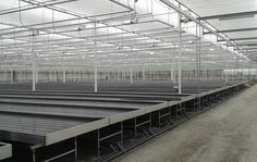Rollingtop Cultivation Benches