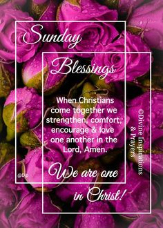 Sunday Worship, Sunday Quotes, Mood Boards, Christianity, Prayers, Encouragement, Blessed, Lord, Collages