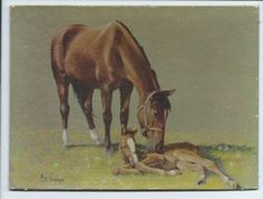 Vtg Horse Print Signed Cal Anderson ~ Horse & Colt Small Artist Board Art Work ~ nice Vintage Touch $8.00