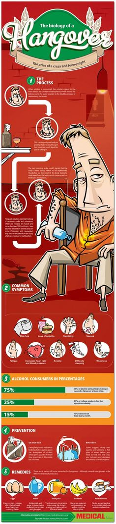 The biology of the dreaded hangover | Articles