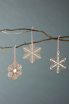 Snowflakes 1 Ornaments Lasercut Birch set of 3 | Etsy Happy Christmas SOLAR ECLIPSE MYTHS & FACTS: DOES SURYA GRAHAN HARM PREGNANT WOMEN & THEIR UNBORN CHILD? | YOUTUBE.COM/WATCH?V=QBNDUPLZG8M #EDUCRATSWEB