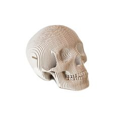 Vince Human Skull White, $80, now featured on Fab.