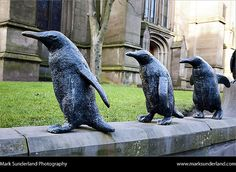 Penguin Statue on wall at St Marys Parish Church Dundee Scotland by Mark Sunderland, via Flickr