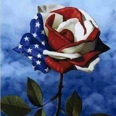 Red white and blue rose art for memorial day.