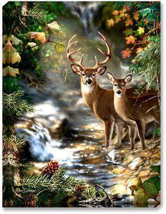 DIY diamond Painting Deer Cross Stitch diamond embroidery mosaic diamonds wall stickers home decor Animal Pictures Deer Pictures, Animal Pictures, Deer Pics, Deer Photos, Beautiful Creatures, Animals Beautiful, Animals And Pets, Cute Animals, Deer Art