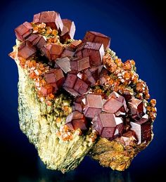 Perfect crystals of Andradite Garnet sitting atop Hedenbergite sprays From Serifos Island, Kykládes Prefecture, Aegean Islands Department, Greece. Minerals And Gemstones, Rocks And Minerals, Foto Nature, Chocolate Bowls, Beautiful Rocks, Mineral Stone, Rocks And Gems, Stones And Crystals, Gem Stones