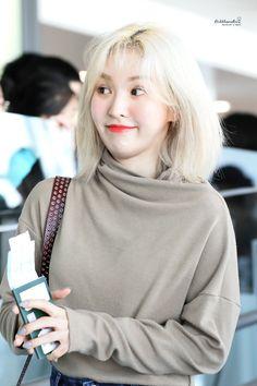 Velvet Wallpaper, Wendy Red Velvet, Seulgi, South Korean Girls, Kpop Girls, Cool Girl, Wendy Rv, Twitter, Irene