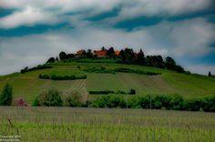Alsace region between Riquewihr and Strasbourg in France #vineyard #france #alsace #alsacetourisme #europe #wanderlust #travel #travelordie #travelphotography #green #winecountry #roadtripeurope #roadtrip #clouds #seetheworld #beautifulworld #godscreation