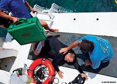 Alert Diver | Oxygen as Definitive Treatment