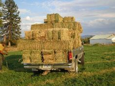 square baled hay in feild - Google Search