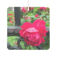 #floral - #Raindrops on Roses Pink Rose Floral NYC Gate Photo Car Air Freshener