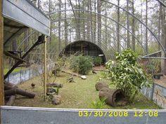 Natural Environment Quail Aviary