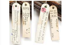 pinterest specimen label | Specimen labels for herald petrel (pterodroma arminjoniana ...