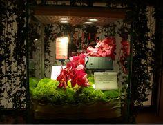 Switzerland, The Secret, Luxury, Crafts, Collection, Women, Women's, Crafting, Diy Crafts