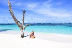Bird Island Seychellen, Bird Island Lodge Seychelles