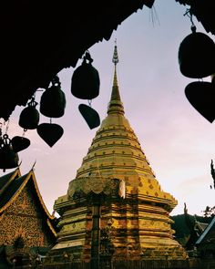 Guide to Visiting Wat Phra That Doi Suthep: Chiang Mai's Temple on a Mountaintop Chiang Mai Thailand, Running Late, The Monks, Green And Gold, To Go, Asia, Explore, Adventure, Mountains