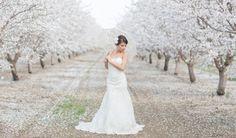Spring Bridal Shoot