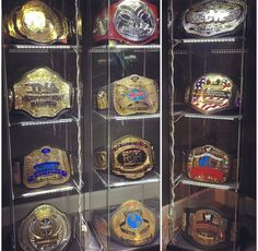 Matt Hardy Championship Belt Collection