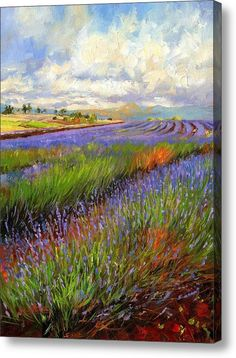 Lavender Field Acrylic Print by David Stribbling. All acrylic prints are professionally printed, packaged, and shipped within 3 - 4 business days and delivered ready-to-hang on your wall. Choose from multiple sizes and mounting options. Landscape Art, Landscape Paintings, Lavendar Painting, Fine Art Amerika, Field Paint, Lavender Fields, Art For Art Sake, Animal Paintings, Art Pictures