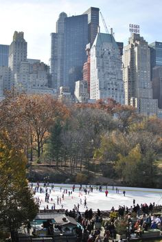 NYC -. Central Park South, skating on the ice on a winter morning...