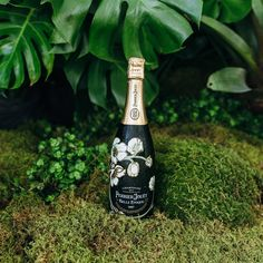 Perrier Jouet, Starbucks Iced Coffee, Coffee Bottle, Champagne, Decor, Decorating, Decoration, Inredning, Dekoration