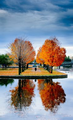 Reflections of Fall by Michael Vesia on 500px