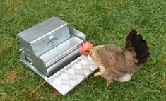 If you are interested in raising backyard chickens, you are definitely going to need feeders and waterer plans. Chickens love to plunder all the time, so it is a good move to change their feeders and plant in creative and feasible water A Frame Chicken Coop, Mobile Chicken Coop, Chicken Coop Pallets, Backyard Chicken Coop Plans, Chicken Feeders, Raising Backyard Chickens, Building A Chicken Coop, Chicken Garden, Small Chicken Breeds