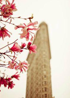 New York City Photography Flatiron Building Spring by Raceytay