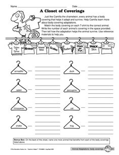 Need an egg experiment this spring? This science worksheet lists ...