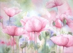 Field of Pink Poppies by louise-art