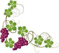 Image Result For Climbing Plant Drawing Modern Image Result For Climbing In 2020 Vine Decoration Grape Drawing Plant Drawing