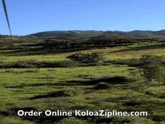 Video of longest zipline on Kauai! #Kauai #Hawaii #Zipline