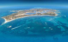 Rottnest Island off of the coast of Perth, Australia. -- I've been here!