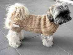 Ravelry: Drop Stitch Wrap pattern by Ing-credible Threads Designs free pattern - Hunde Dog Sweater Pattern, Knit Dog Sweater, Dog Sweaters, Costume Chien, Dog Jumpers, Wrap Pattern, Dog Items, Dog Coats, Pet Gifts