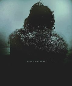 Jon Snow ~ Night Gathers Game of Thrones Ned Stark, Eddard Stark, Game Of Thrones Books, Game Of Thrones Quotes, Snow Night, Hbo Go, House Games, Black Castle, Lets Play A Game
