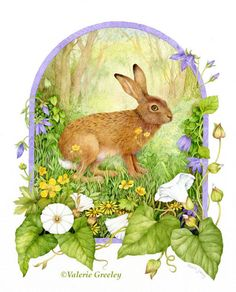"Premium limited edition print  ""Hare's Hideaway""  by Valerie Greeley.. £50.00, via Etsy."