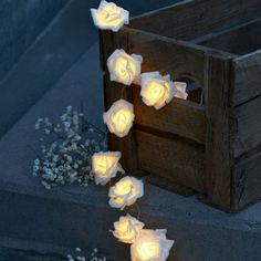 Home Decor: Home Decor – ROSE 12 Large Fairy Lights (Indoor Only) – Dotty Home Gifts & Interiors