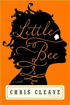 Little Bee by Chris Cleave - a story that stays with you