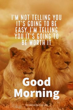 137 Good Morning Quotes And Images Positive Words For Good Morning 12