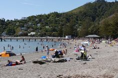 Days Bay wharf New Zealand Landscape, Of My Life, Dolores Park, Landscapes, Memories, Day, Travel, Paisajes, Memoirs