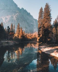 The last of Fall in Yosemite National Park, California - Nature and Science Look Wallpaper, Nature Wallpaper, Wallpaper Desktop, Nature Aesthetic, Travel Aesthetic, Landscape Photography, Nature Photography, Scenic Photography, Night Photography