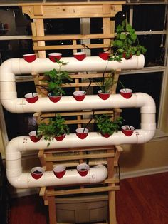 I've always wanted to build a small hydroponic herb garden so I threw this together this week. The pipes are modular and can be adjusted or expanded to accommodate more plants very easily, or you can take the system apart for transport. If you have questions or want help building one of your own feel free to e-mail me at: berrysays@gmail.com